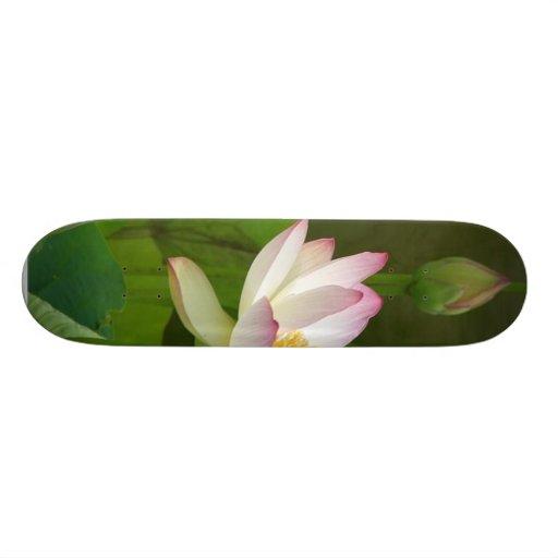Lotus Flowers Ponds Skateboard Deck