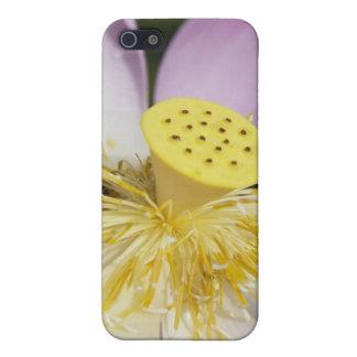 Lotus iPhone 5 Cárcasas