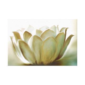 Lotus Impresiones En Lienzo Estiradas