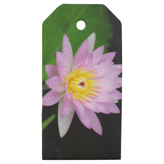Lotus in India Wooden Gift Tags