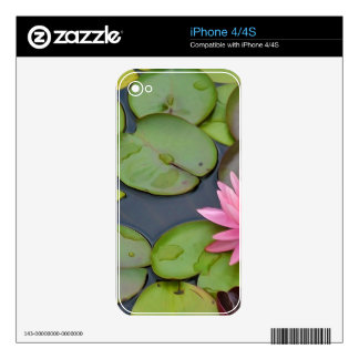 Lotus In The Pond iPhone 4 Decal