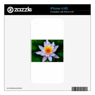 lotus iPhone 4S decal