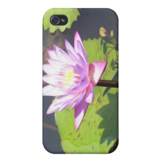 lotus cover for iPhone 4