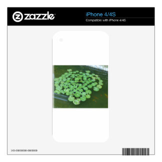lotus leave skins for iPhone 4