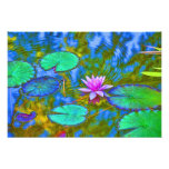 Lotus Lily Pad Water Lily in an Italian Garden Photograph