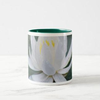 Lotus o waterlily y significado taza de café