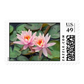 Lotus Pair Postage