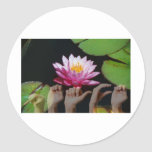 Lotus + Paz ASL Pegatina Redonda