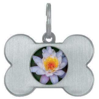 lotus pet name tag
