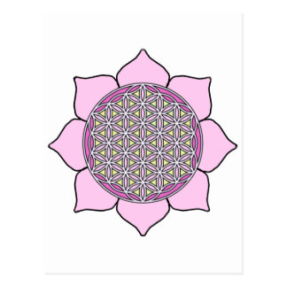 Lotus Pin2 Postcard