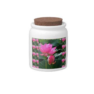 LOTUS Pink and BUD Candy Jars