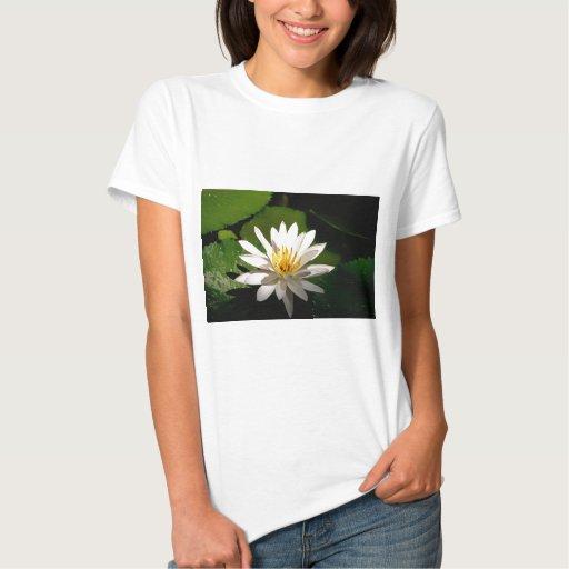 Lotus Poleras