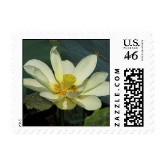Lotus Postage