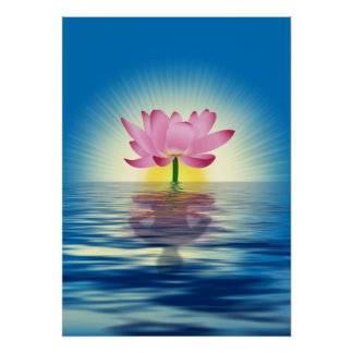 Lotus Reflection Poster