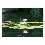 Lotus Reflections Greeting Card