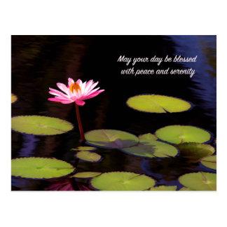 Lotus rosado con la postal de la paz y de la