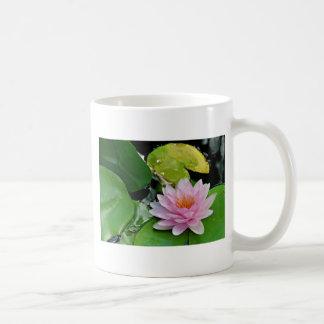 Lotus rosado taza de café