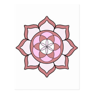 Lotus Rose3 Postcard