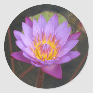 Lotus Stickers
