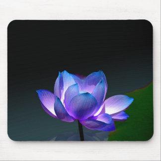 Lotus violeta en la plena floración, mousepad tapetes de ratón