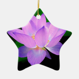 lotus water romantic date bridal peace hope love Double-Sided star ceramic christmas ornament