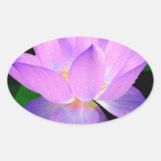 lotus water romantic date bridal peace hope love oval sticker
