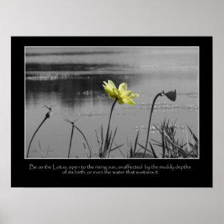 Lotus y poster de motivación de las libélulas póster