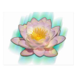 Lotusbloom Postcard