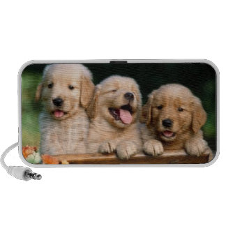 Loudspeakers small dogs mini speaker