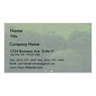 Lough Gill Business Cards