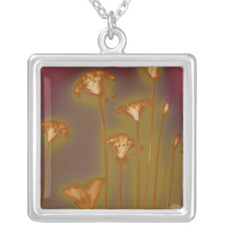 Lough, square necklace by H.A.S. Arts