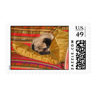 Louie the Beloved Pug Photo Postage