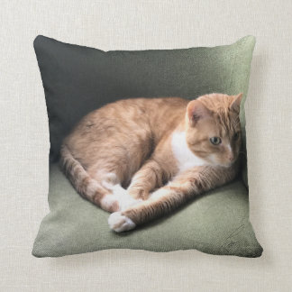 Louie's Morning Chair Throw Pillow