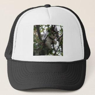 Louis in a Tree Hat