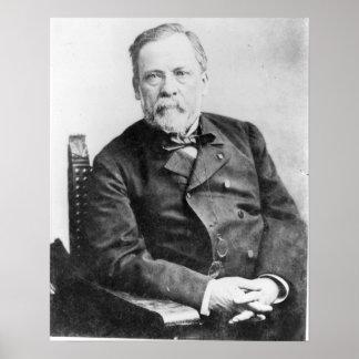 Louis Pasteur Póster