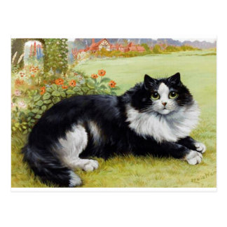 Louis Wain Cat, Black & White Cat Postcard