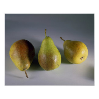 Louise Bonne pears For use in USA only.) Poster