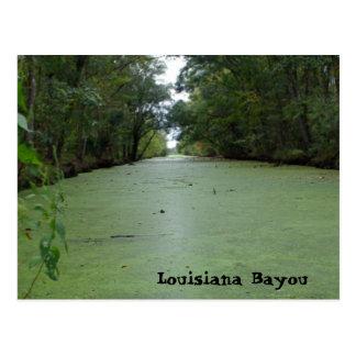 Louisiana Bayou Postcard