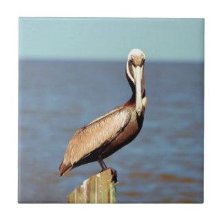 Louisiana Brown Pelican 4.jpg Ceramic Tile