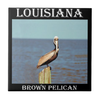 Louisiana Brown Pelican 4.jpg Tile