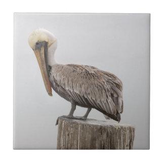 Louisiana Brown Pelican Ceramic Tile
