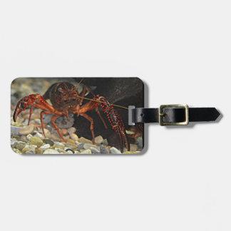 Louisiana Crawfish Luggage Tag