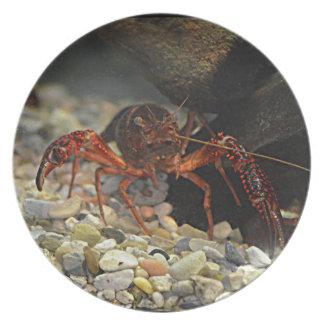 Louisiana Crawfish Melamine Plate