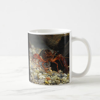 Louisiana Crawfish Mugs