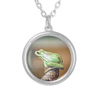 Louisiana Green Tree Frog Necklace