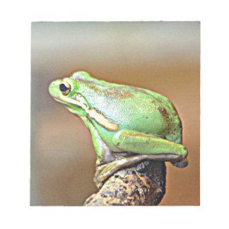 Louisiana Green Tree Frog Notepad