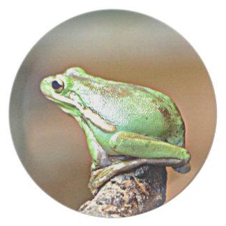 Louisiana Green Tree Frog Plate
