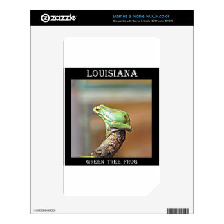 Louisiana Green Tree Frog Decal For NOOK Color