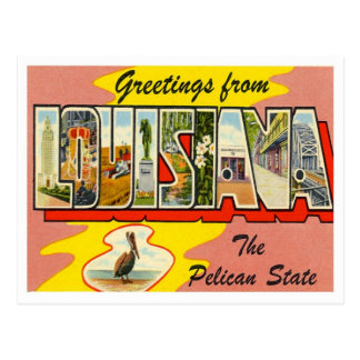 Louisiana Greetings From US States Postcard