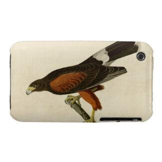 Louisiana Hawk Case-Mate iPhone 3 Cases